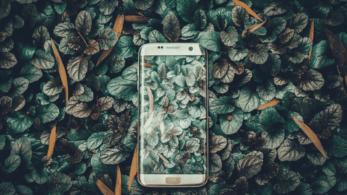 Mobile Developer Yol Haritası: Android Platformu