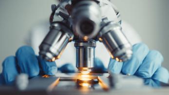 Biyoteknoloji Nedir? Biyoteknoloji Tipleri ve Çalışmaları