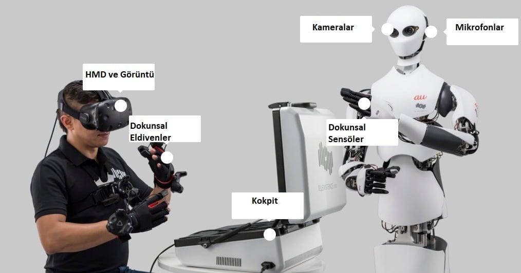 Raf Düzenleyen Robotlar