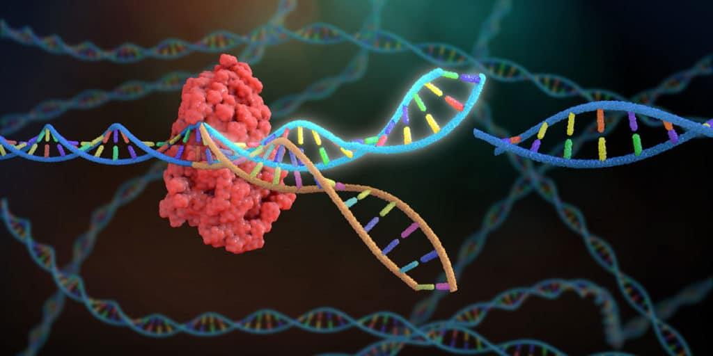 Tıp dünyasında teknolojinin yeri ve genom