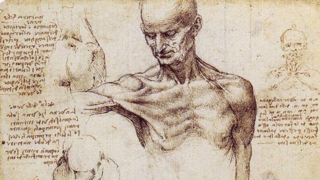 Leonardo da vinci insansı robot buluşu