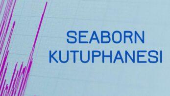 Seaborn Kütüphanesi Nedir? Nasıl Kullanılır?
