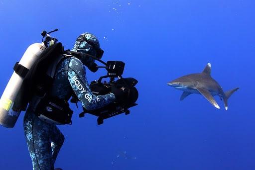 doğa belgeselleri nasıl çekiliyor?