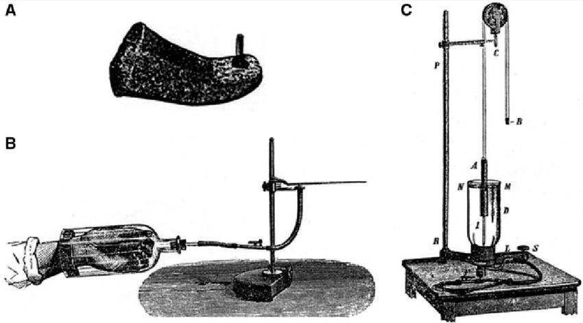 Poligraf Makinesi Nedir? Poligrafın Tarihi, Angelo Mosso Pletismograf
