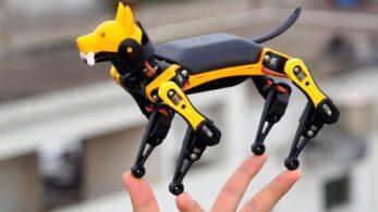 Petoi Bittle: Robotik Evcil Hayvanınız