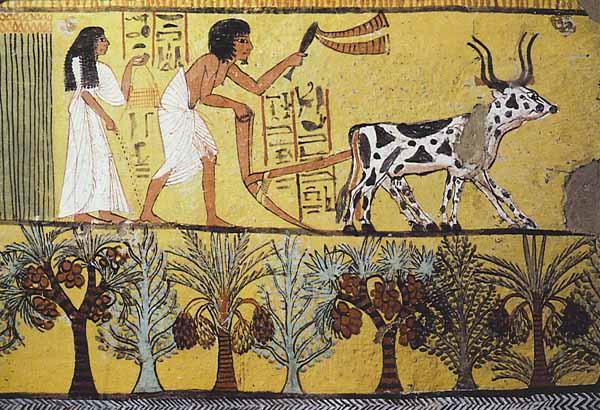 Eski Mısır'da Tarım
