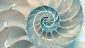 biyomimetik ile geliştirilen teknolojiler