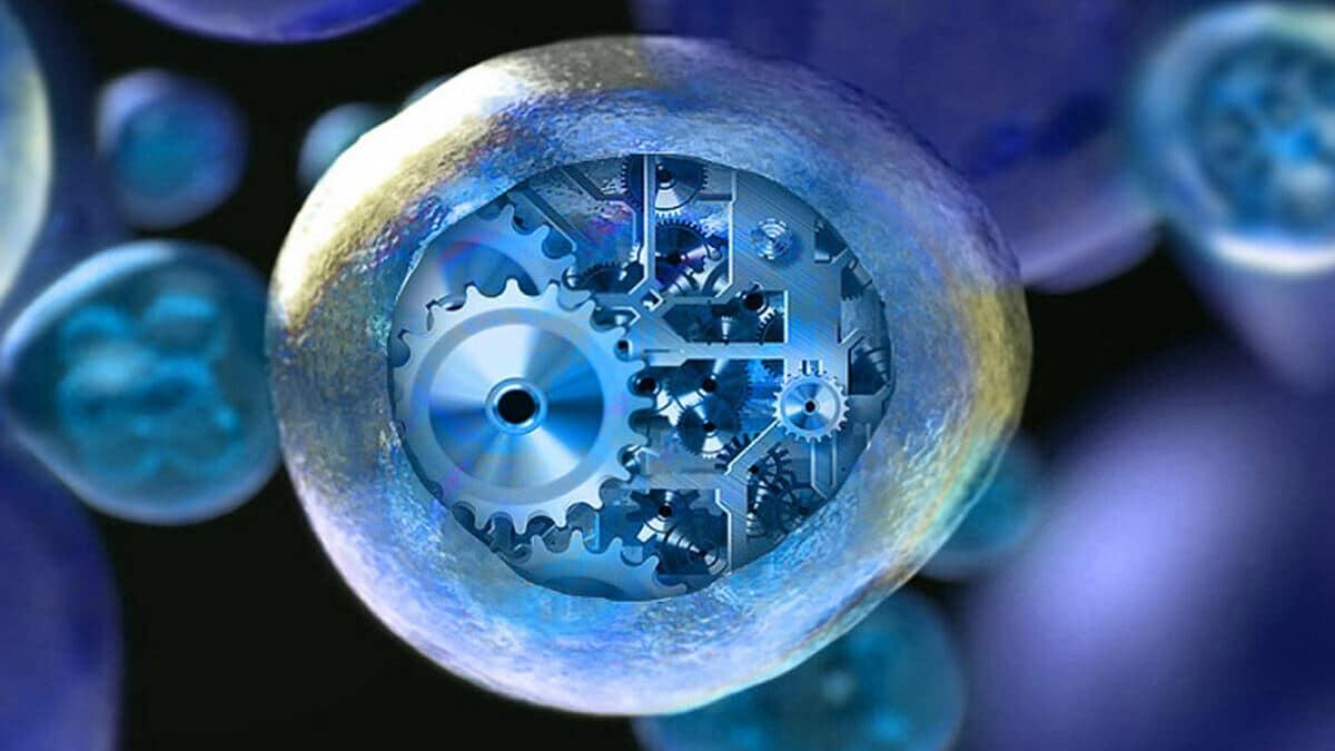 Sentetik Biyoloji Nedir?