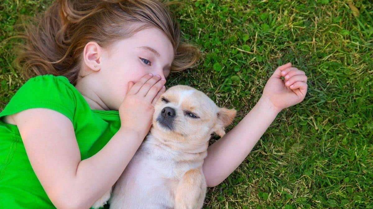 Hayvanlarla İletişim Kurmak