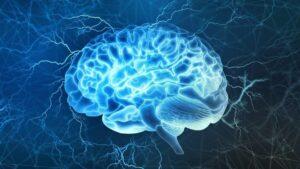 İnsan Beynini Haritalandırmak