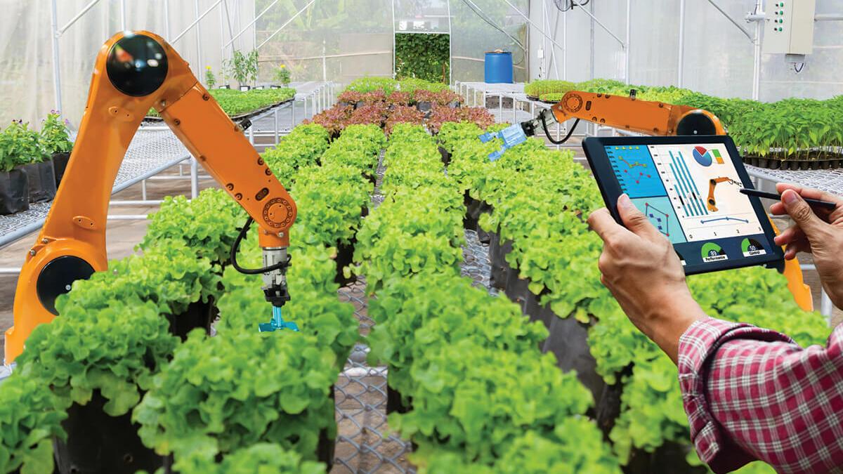 Teknoloji Tarımda Nasıl Kullanılır?