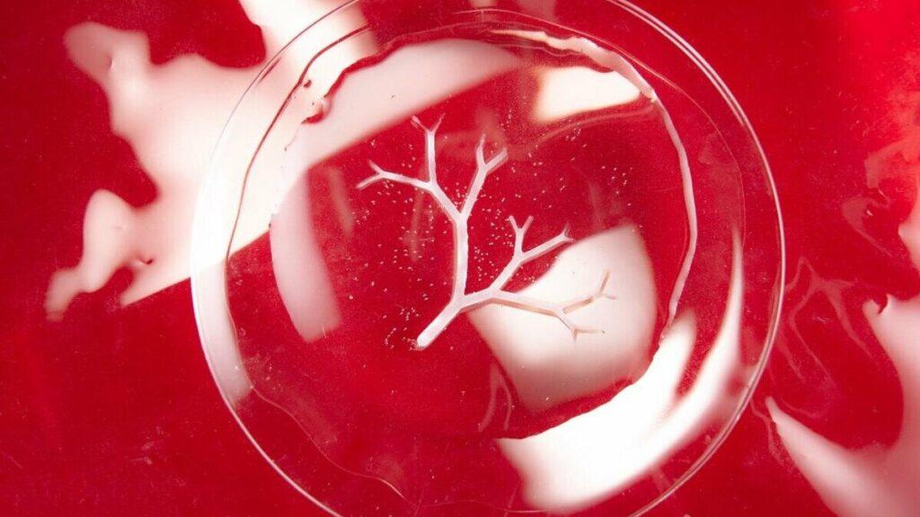 Bakterilerden Üç Boyutlu Nesneler Üretmek