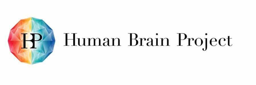 Human Brain Projesi