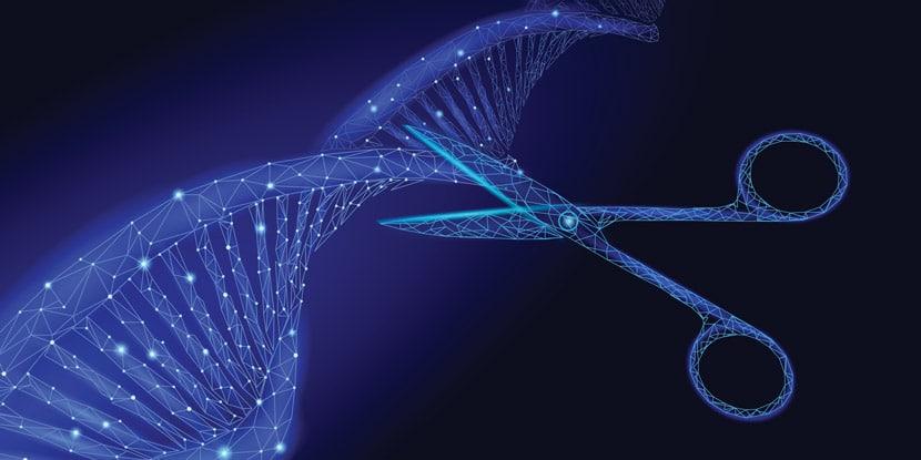 CRISPR Nasıl Çalışır?