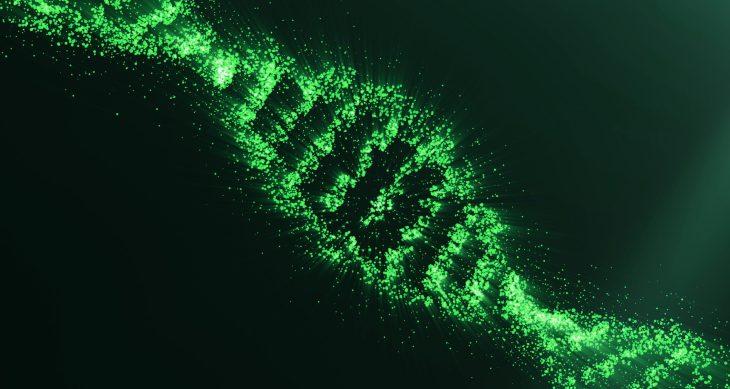 CRISPR Uygulamaları