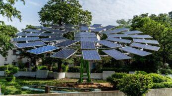 Güneş Ağacı: Güneş Enerjisi Üretmenin Yaratıcı Yolu