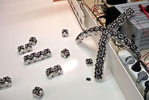 Sürü Robotiği Davranışları