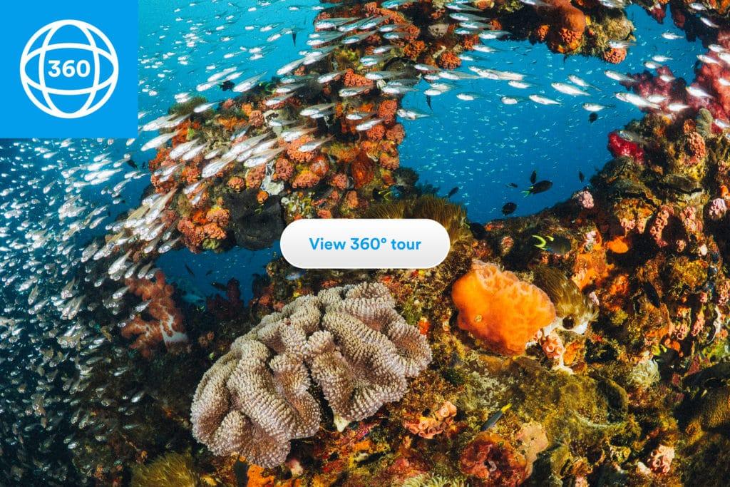 Sanal e-Resifler