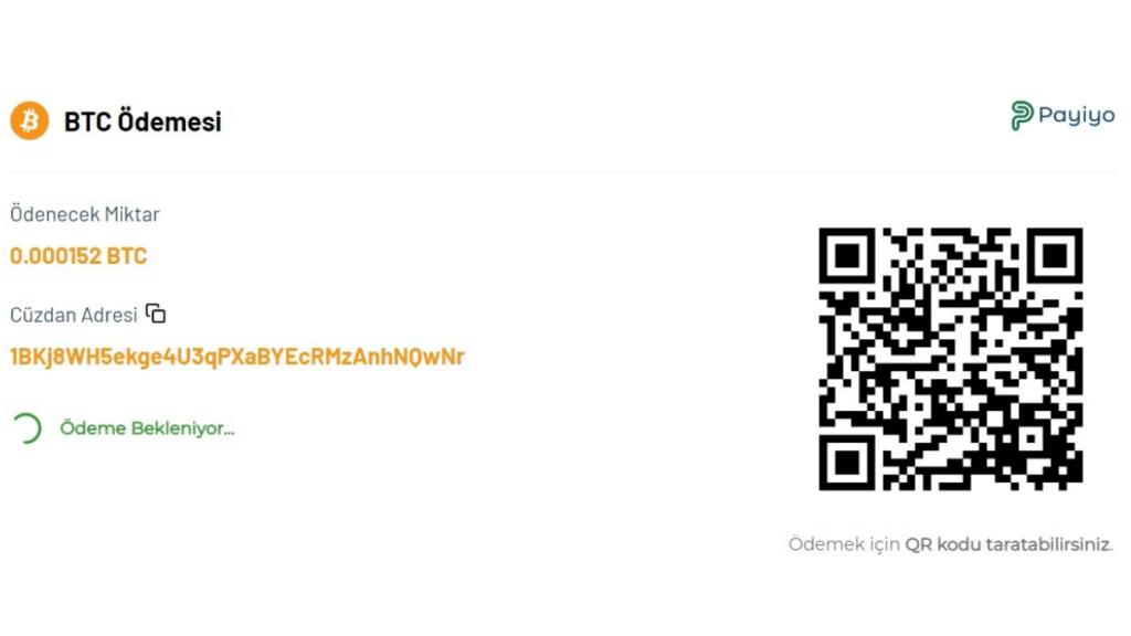 Payiyo bitcoin ödemesi