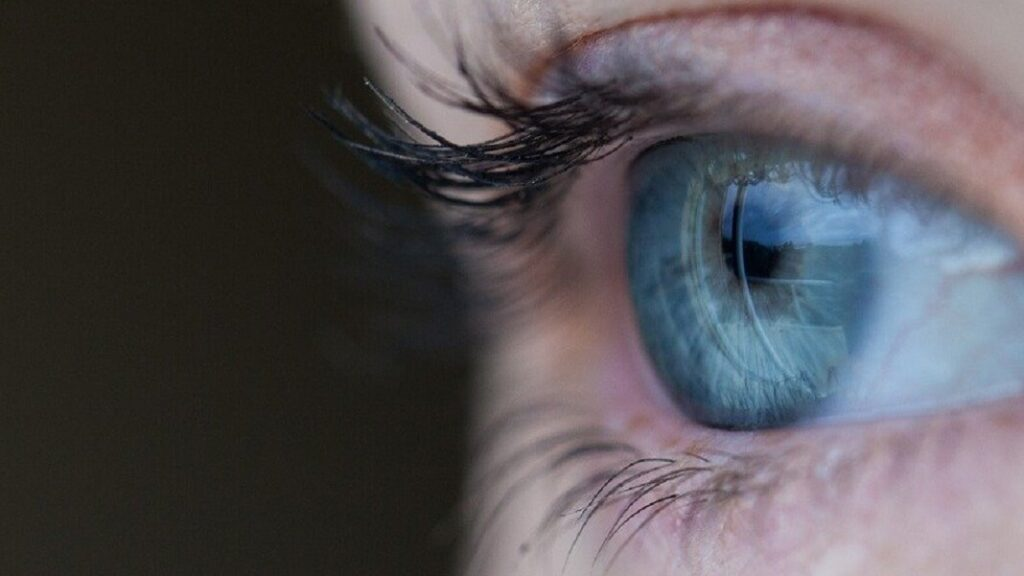 Biyonik Göz Teknolojisi Nedir?