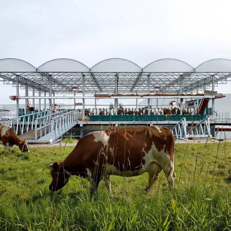 Rotterdam Yüzen Çiftlik Projesi